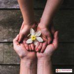 Neurorehablitación y estimulación del desarrollo